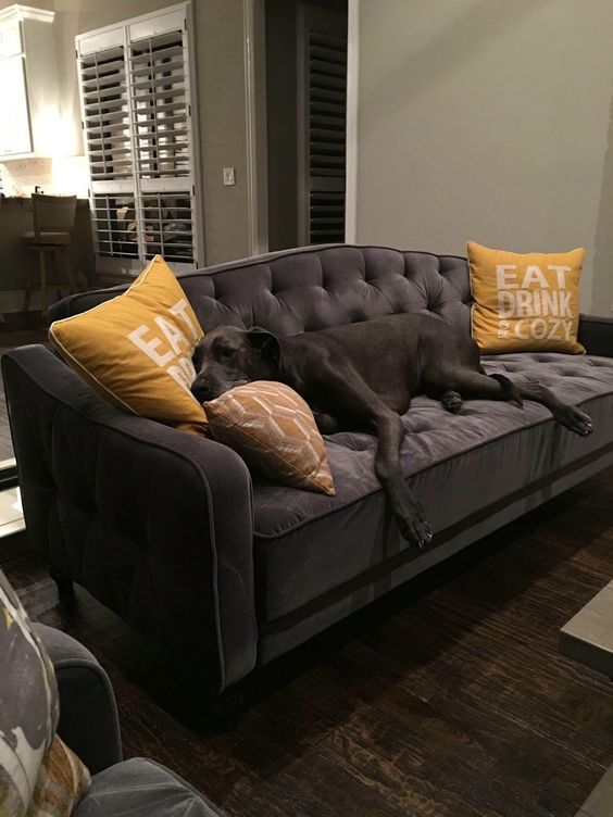 Vintage Tufted Convertible Sofa Home Guest Room Office Basement Guest Rooms