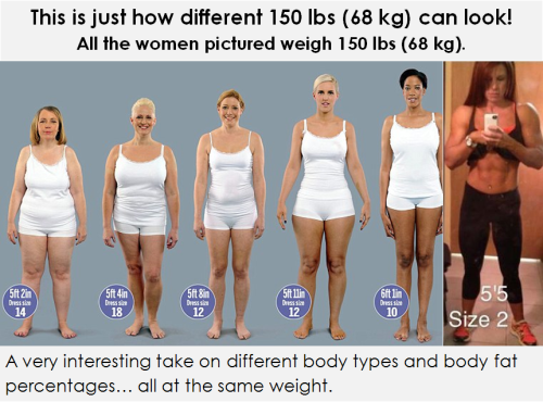 You Same weight different body fat