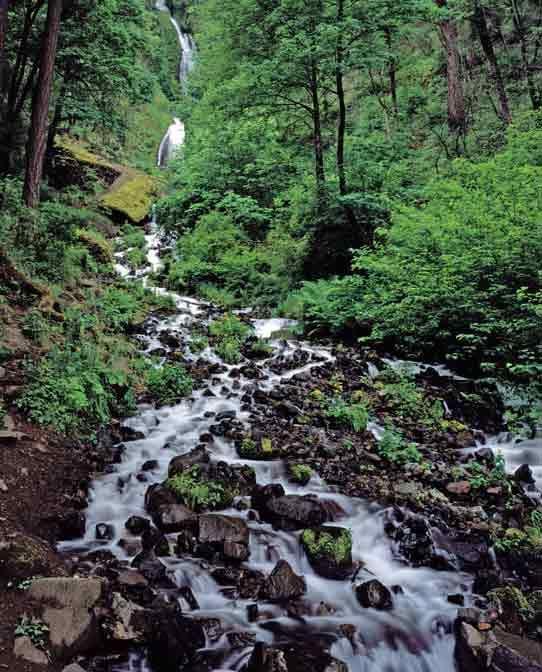Hiking Near Portland Oregon Outdoors Pdxrelocate