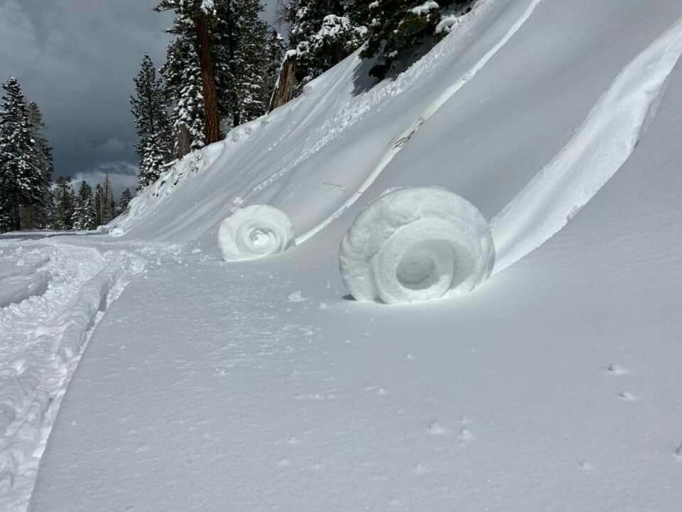 Snow Rollers are usually a few inches wide. These in the
