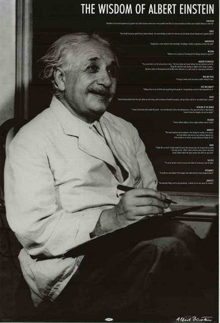 Albert Einstein 15 Wisdom Quotes Poster 24x36 Remember This