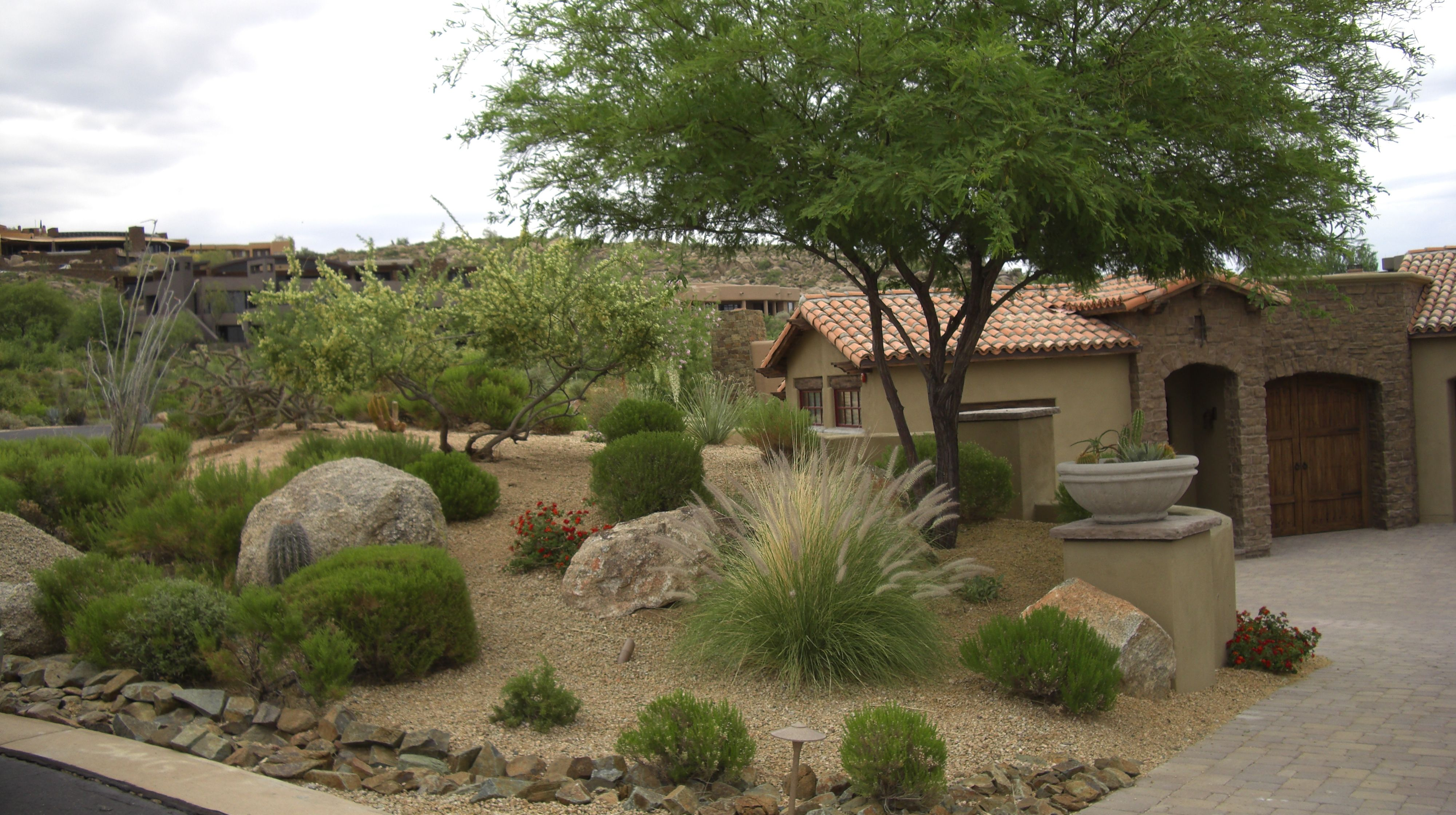 Home and garden front yard - Garden And Patio Desert Plants For Front Yard Landscaping House Design With Stone Border Trees