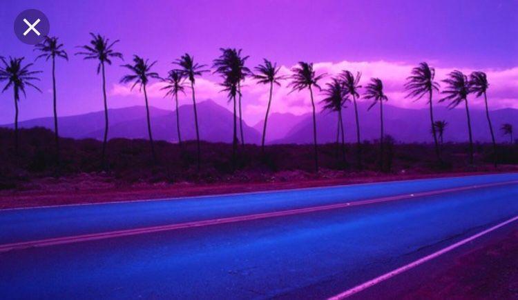 Pin By Boujee Bi3h On A E S T H E T I C Palm Trees Wallpaper Purple Sky Vaporwave Wallpaper