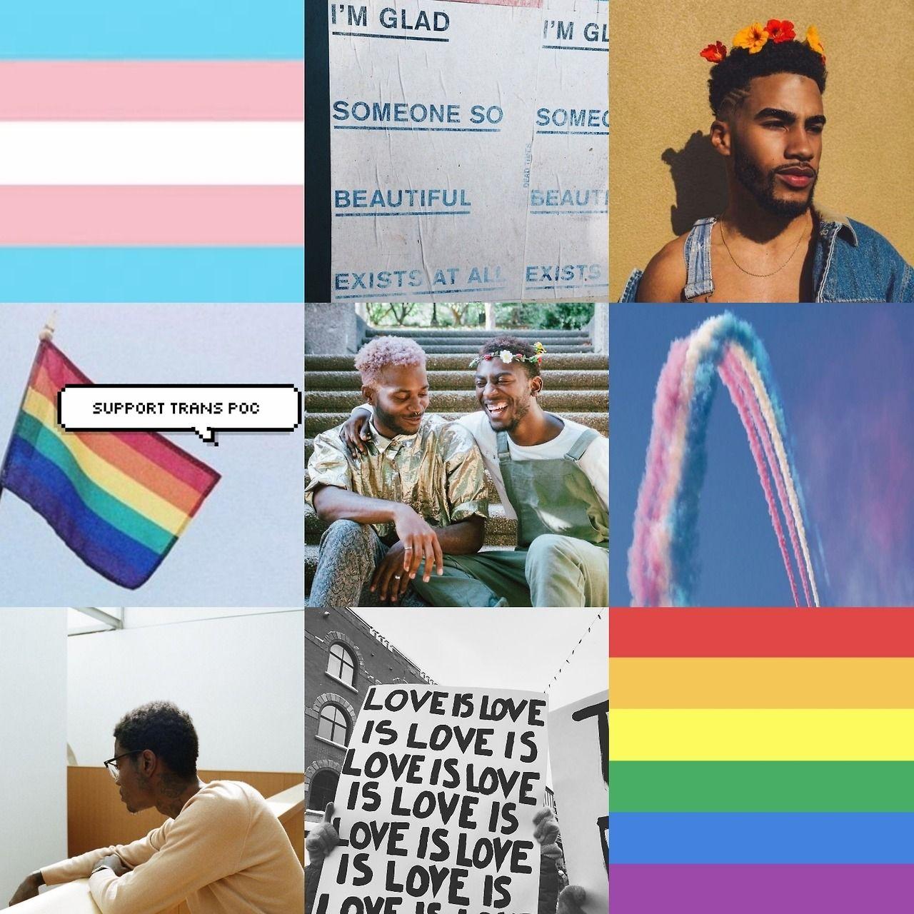 Gay lesbian gl transgender