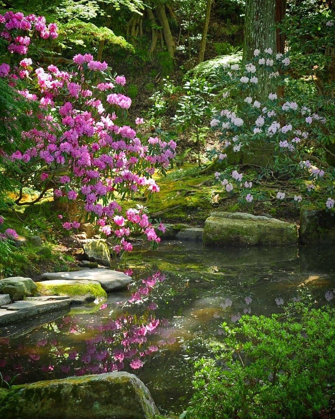 Photography by Masahiko   Beautiful places nature, Beautiful nature ...