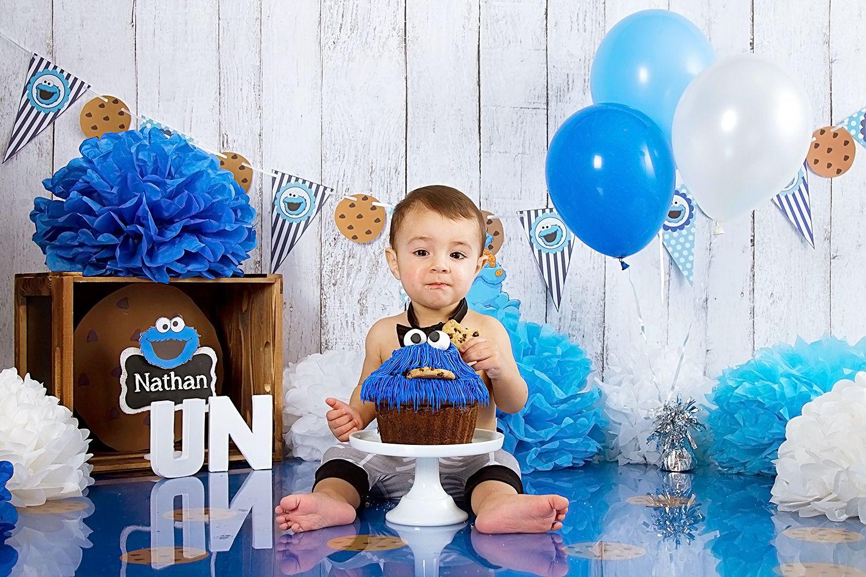 Cookie Monster Smash The Cake Blue Smash The Cake Cake Smash