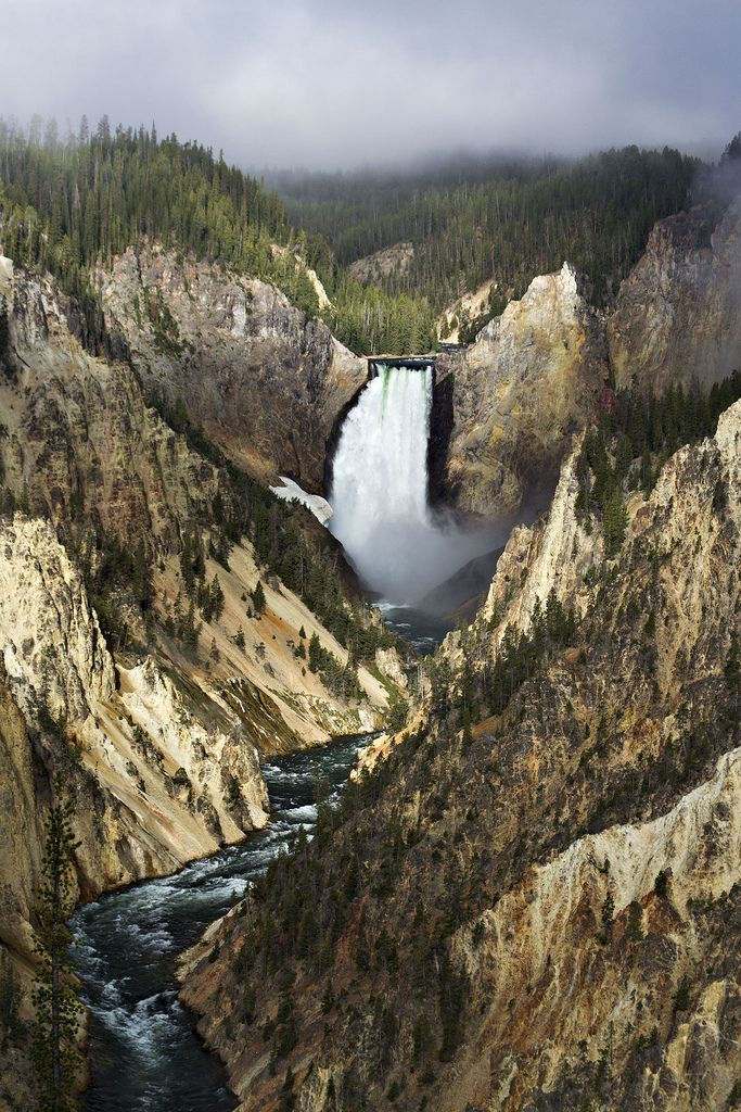 justbreezy Yellowstone River Lower Falls Artist Point