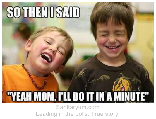 I Ll Do It In A Minute Clean Funny Pictures Funny Mom Memes Mom Humor