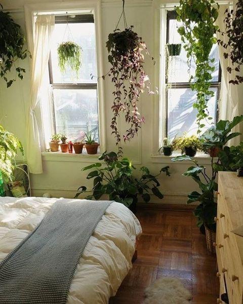 Plant Bedroom Interior Inspo Bed Goals Pinterest Bohemian
