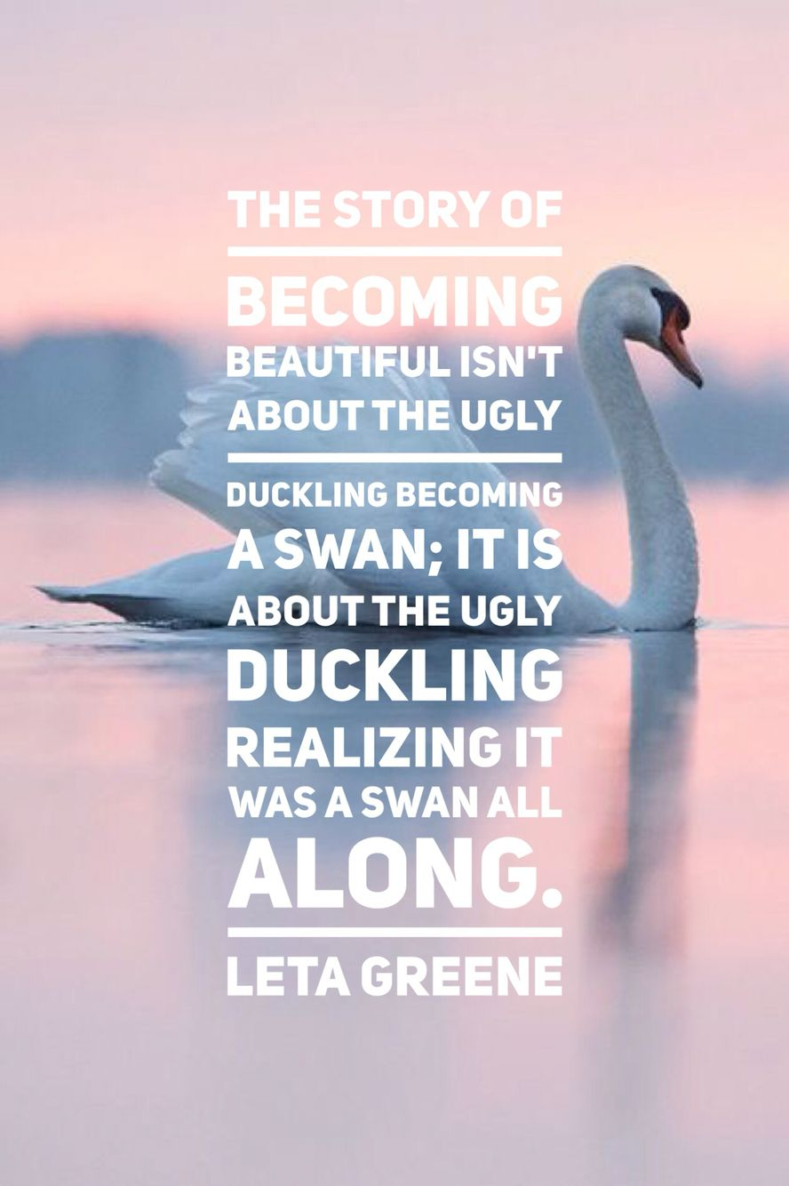 the story of becoming beautiful isn u0027t about the ugly duckling