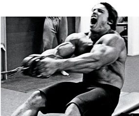 Arnold The Competitor Bodybuilding Motivation Schwarzenegger Bodybuilding Bodybuilding