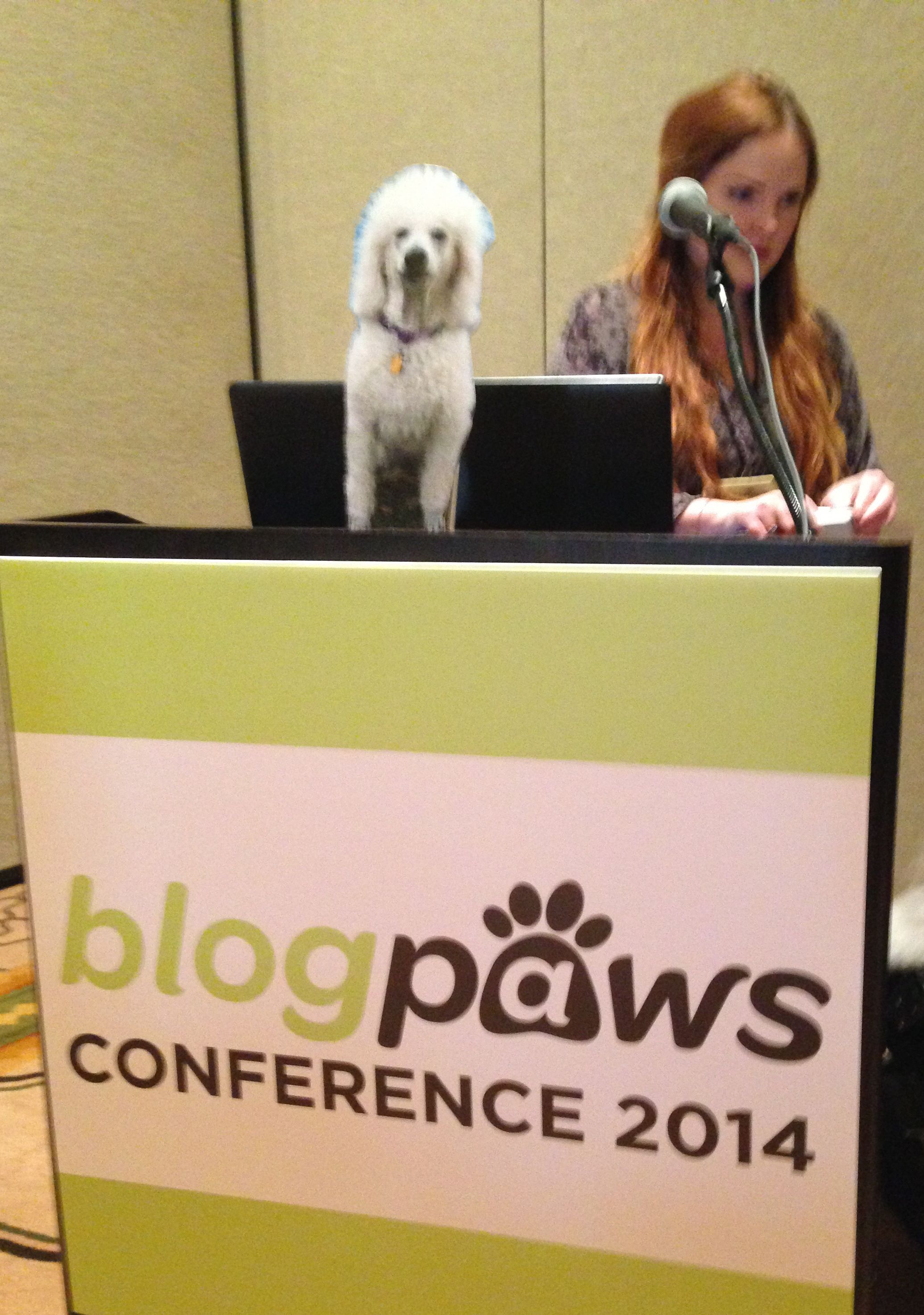 After the Pinterest presentation, @Carma Poodale Allen will expound on the Heartbreak of Being Flat at #BlogPaws. @Snout School: Teaching Vets Social Media