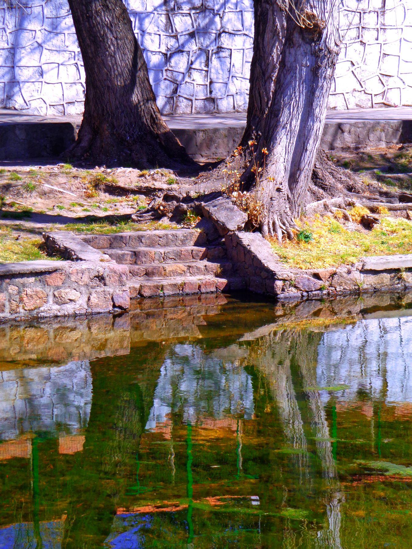 Simetría natural, el árbol y el río, juntos, siempre juntos. Un rincón del río en Mina Clavero.