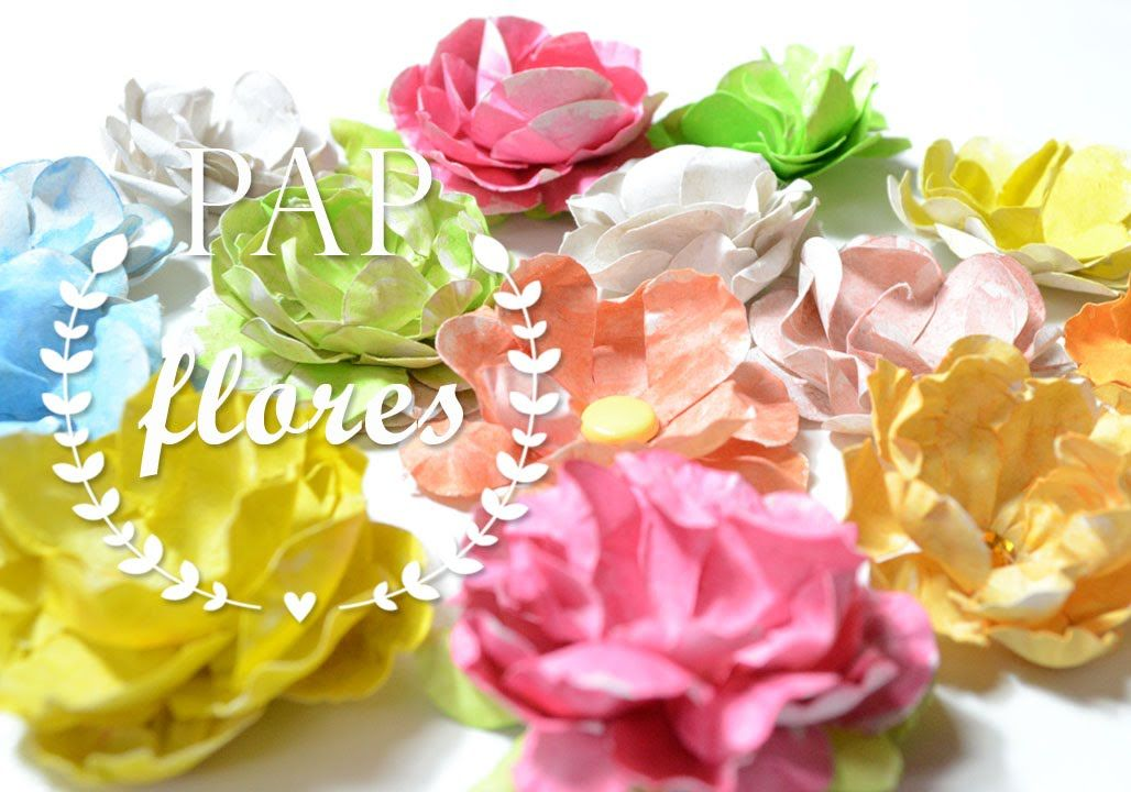 flores com audio