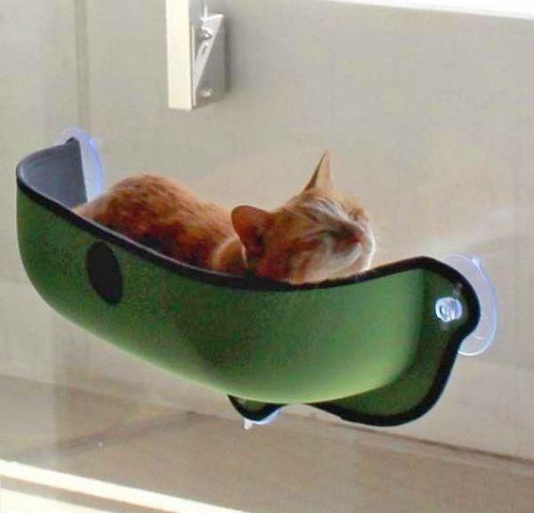 K H Manufacturing EZ Mount Window Cat Bed - Window Suction Kitty Pod - Car  Window Cat Bed dc35d5672d