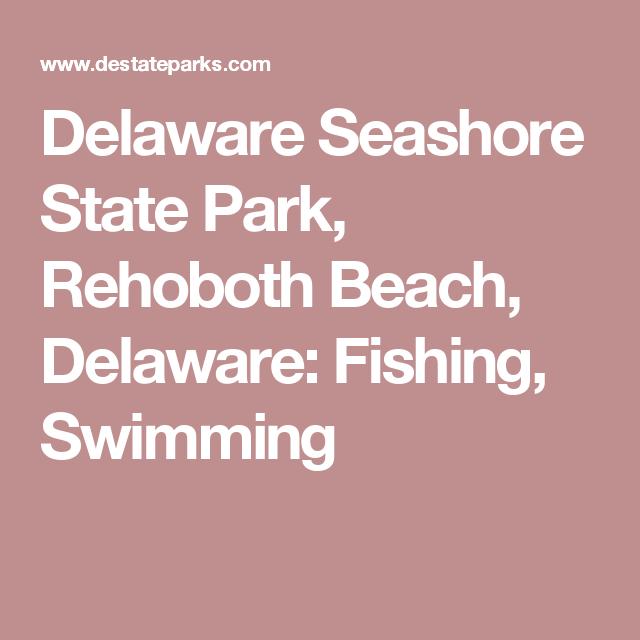 Delaware Seas State Park Rehoboth Beach