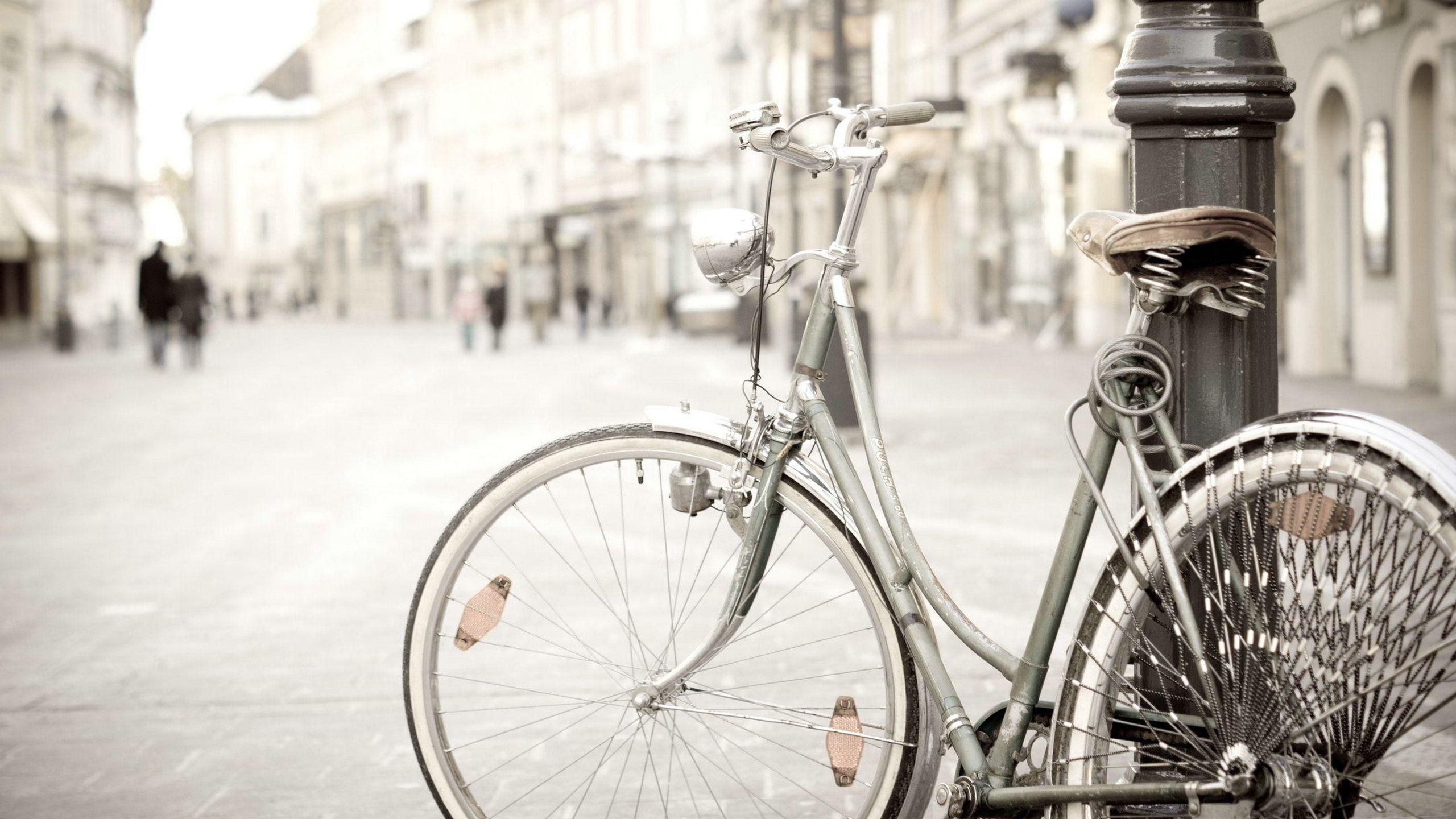 Vintage Bicycle Mood Hd Wallpaper 2560x1440PX