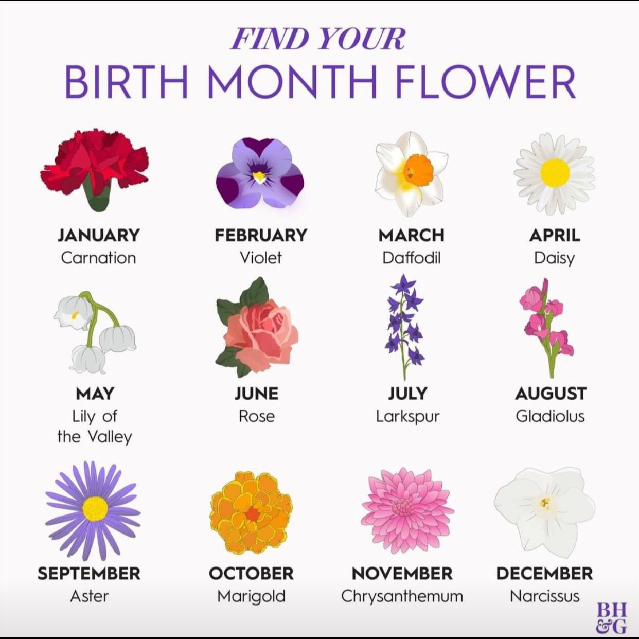 Pin by Haley Hazen on Positive Images Birth month