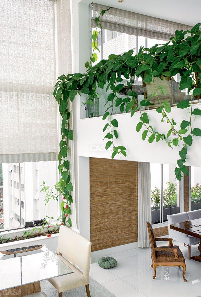 Dentro do apê, cresce um jardim com plantas frutíferas Persianas - decoracion con bambu