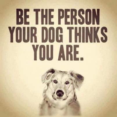 Be the person your dog thinks you are!