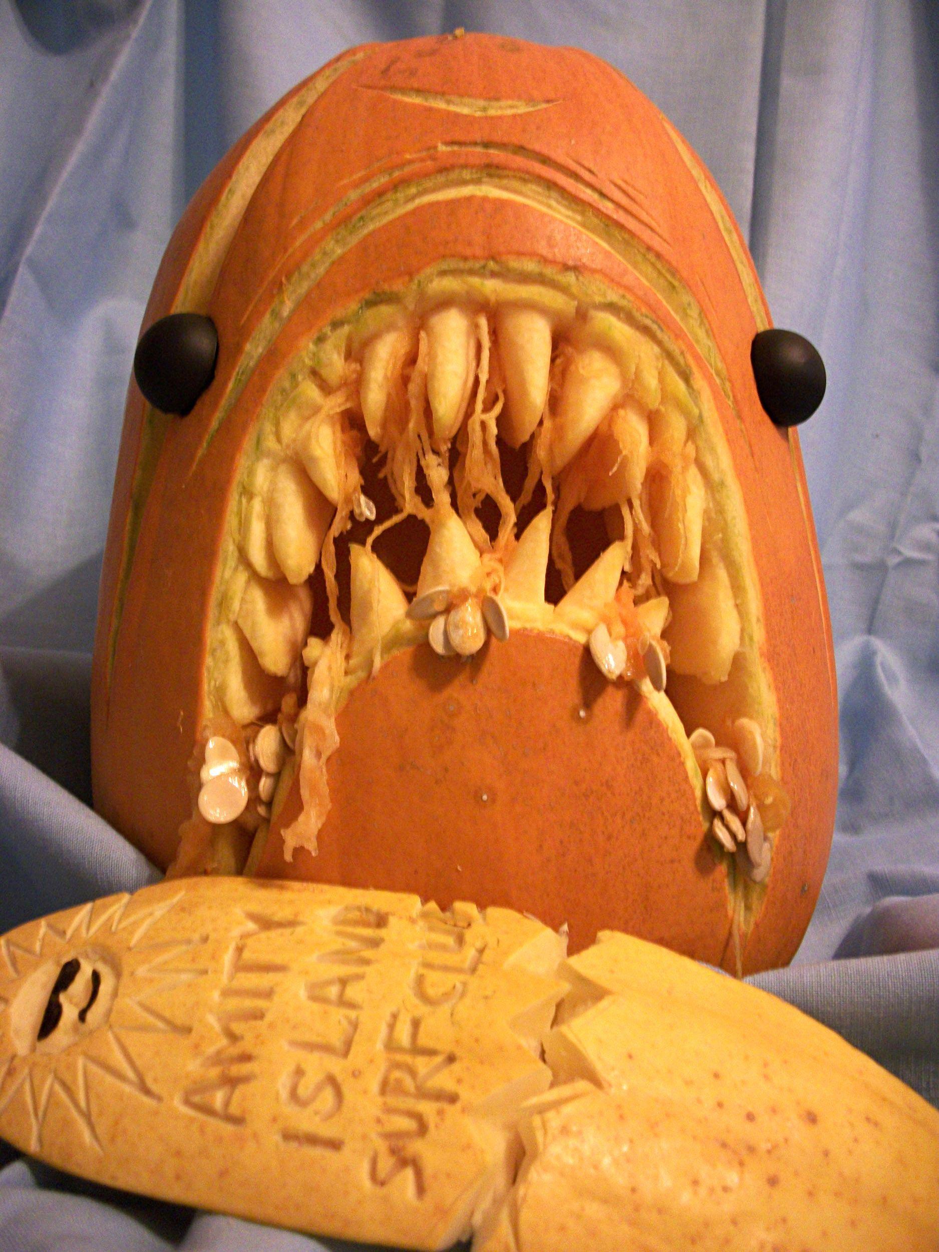 Shea creative pumpkin carving templates jaws shark