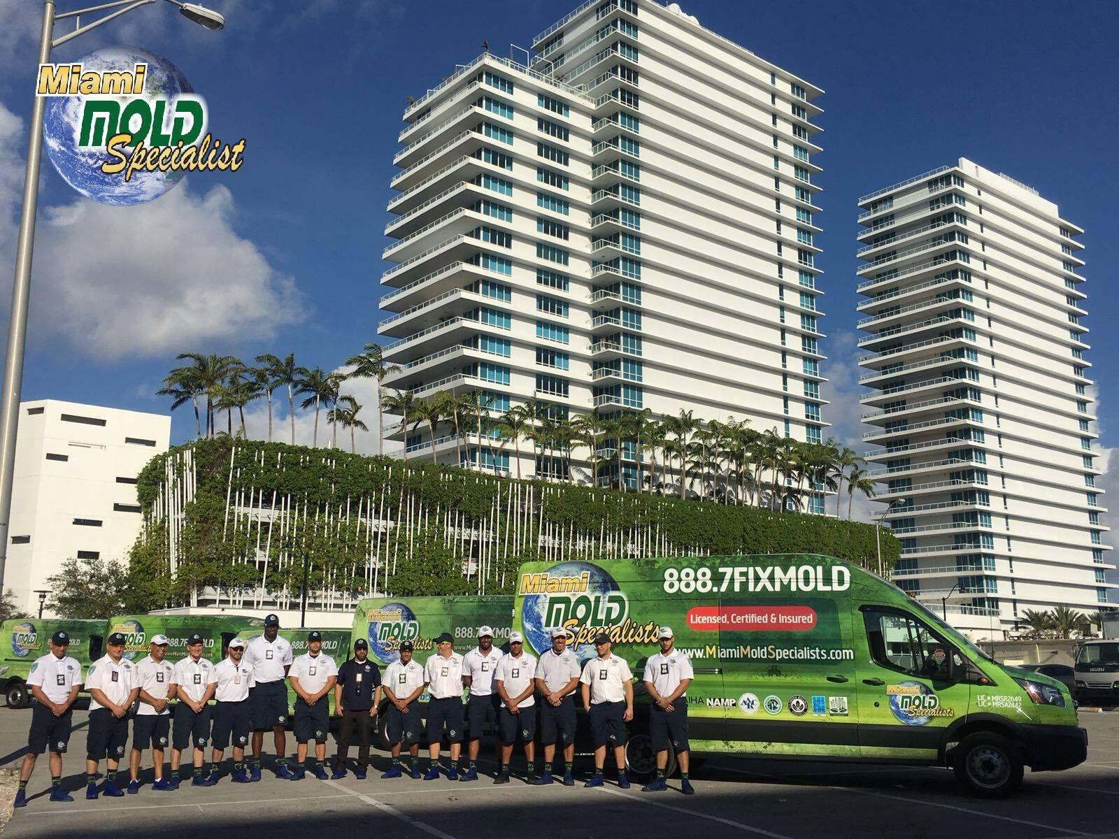 Miami Mold Specialists News Specialist, Florida, Miami