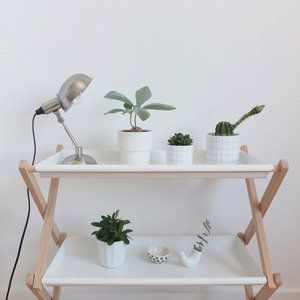 Little plantshelf
