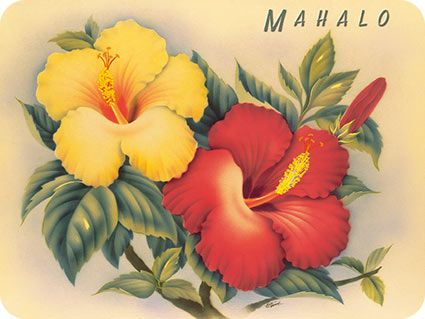 Hawaiian Hibiscus - Hawaiian Thank You / Mahalo Note Cards