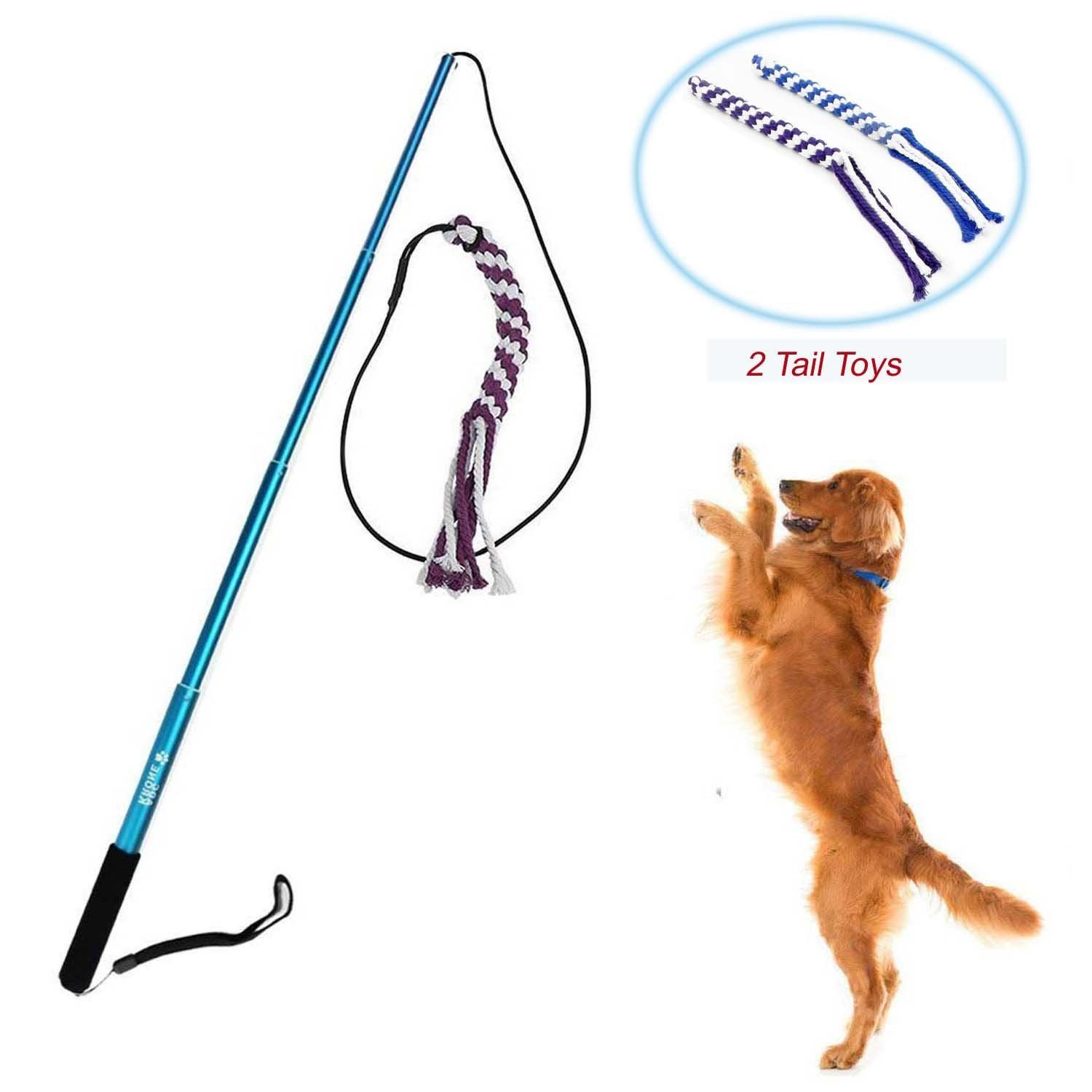 Wellbro Interactive Dog Extendable Teaser Wand with 2 Rope Chew