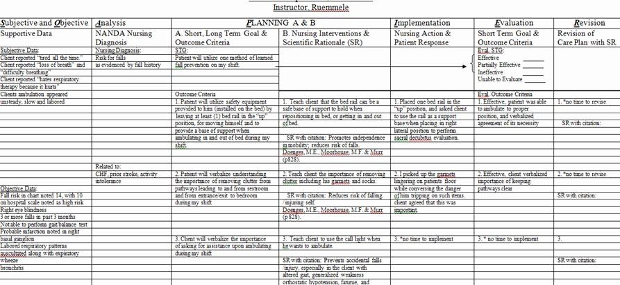 Nursing Care Plans Template Best Of Nursing Care Plan Risk