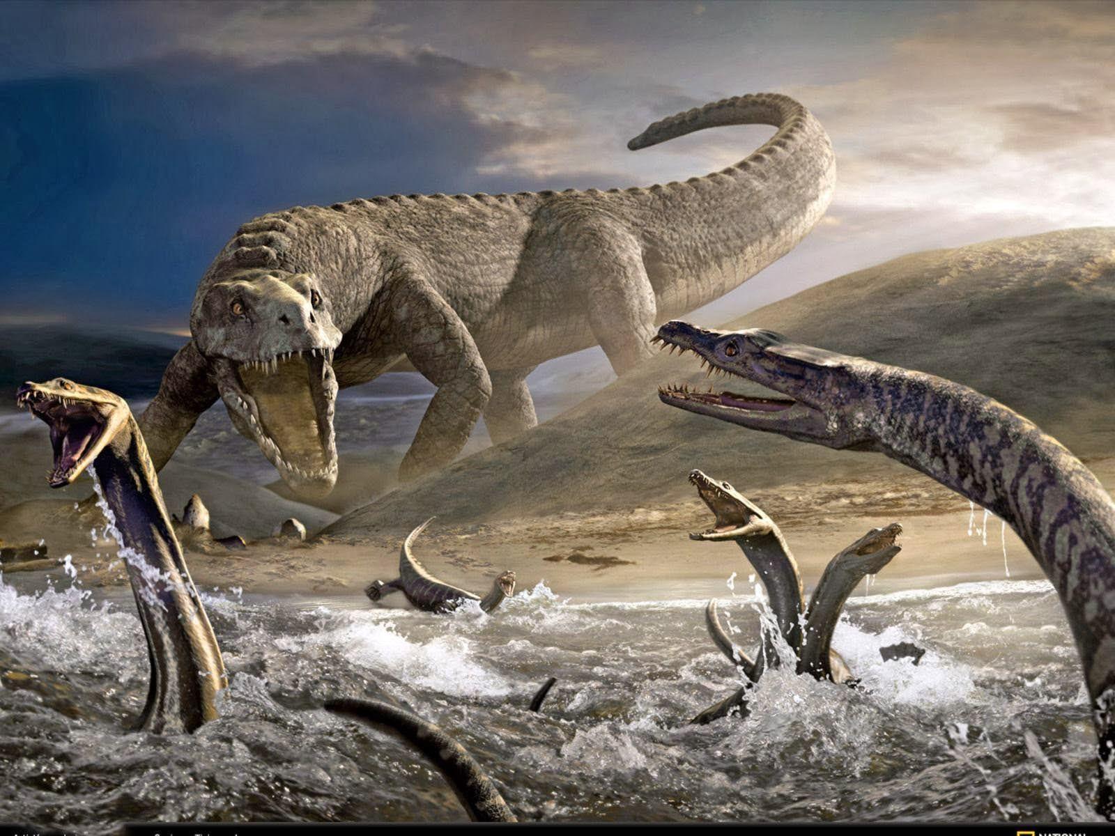 Fighting Animal HD Wallpapers The Cool Art Dinosaur