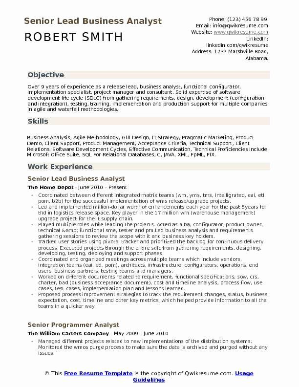 Business Analyst Resume Summary Luxury 10 Business Analyst Cv Templates Pdf Doc Business Analyst Resume Resume Summary Examples Resume Summary