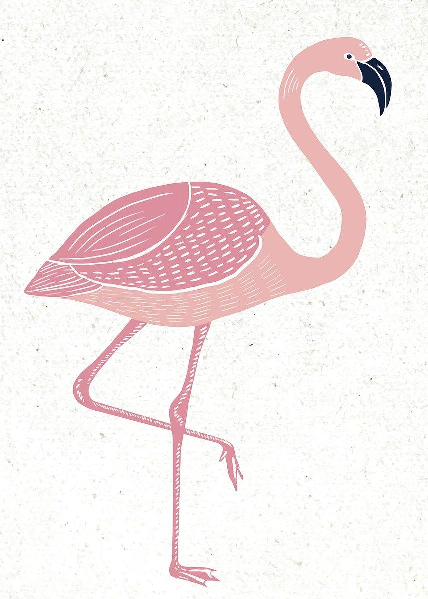 download premium vector of pink flamingo vector vintage linocut hand drawn  in 2021   flamingo illustration, flamingo vector, flamingo graphic  pinterest