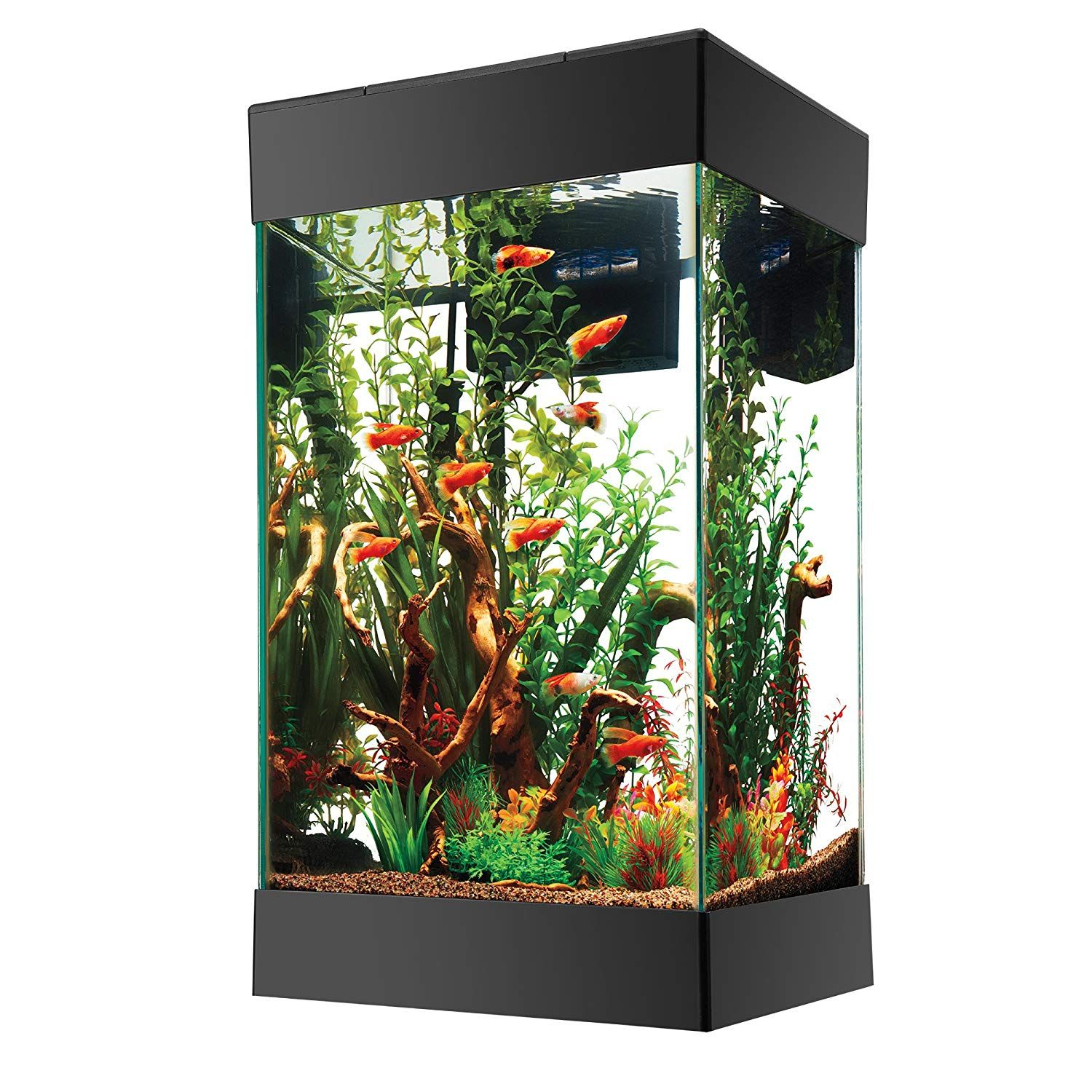 Salt Water Aquarium Set Up Kit Includes Size 15 Glass Aquarium Submersible 50w Preset Heater Low Profile Hood Aquarium Kit 20 Gallon Aquarium Stand Aquarium