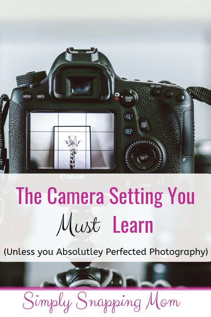 The Secret to Manual Mode: The Beginner Photographer's Guide to Metering -