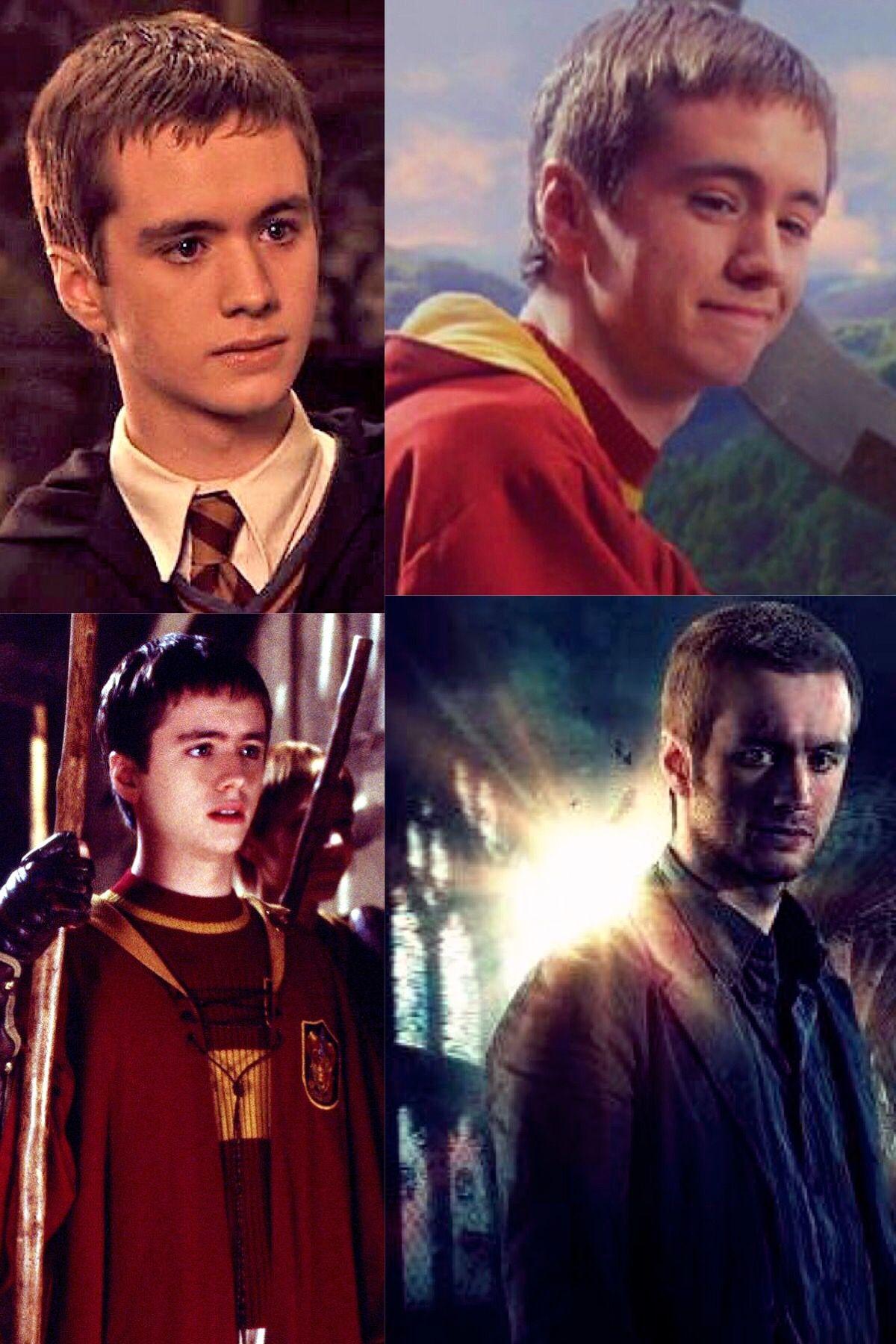 Oliver Wood Harry Potter Pictures Oliver Wood Harry Potter