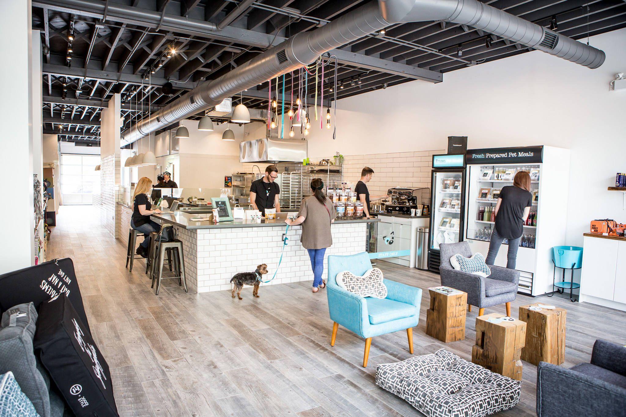Top 10 Dog Friendly Cafes In Toronto Pet Cafe Dog Hotel Indoor Dog Park