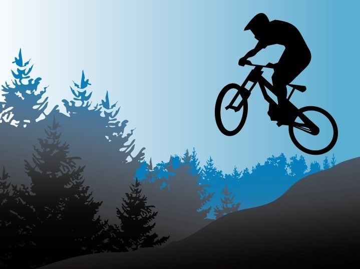 Vector Mountain Bike Illustration | Bike drawing, Bike ...