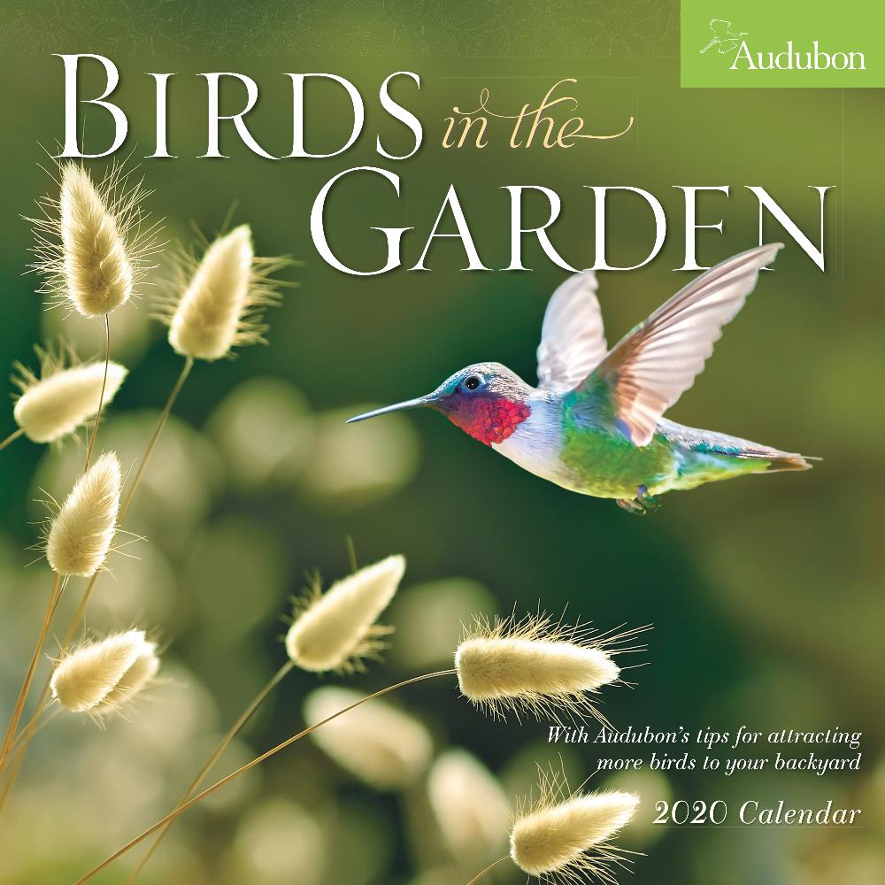 Audubon Calendars Free Epub Books Free Pdf Books Free Reading
