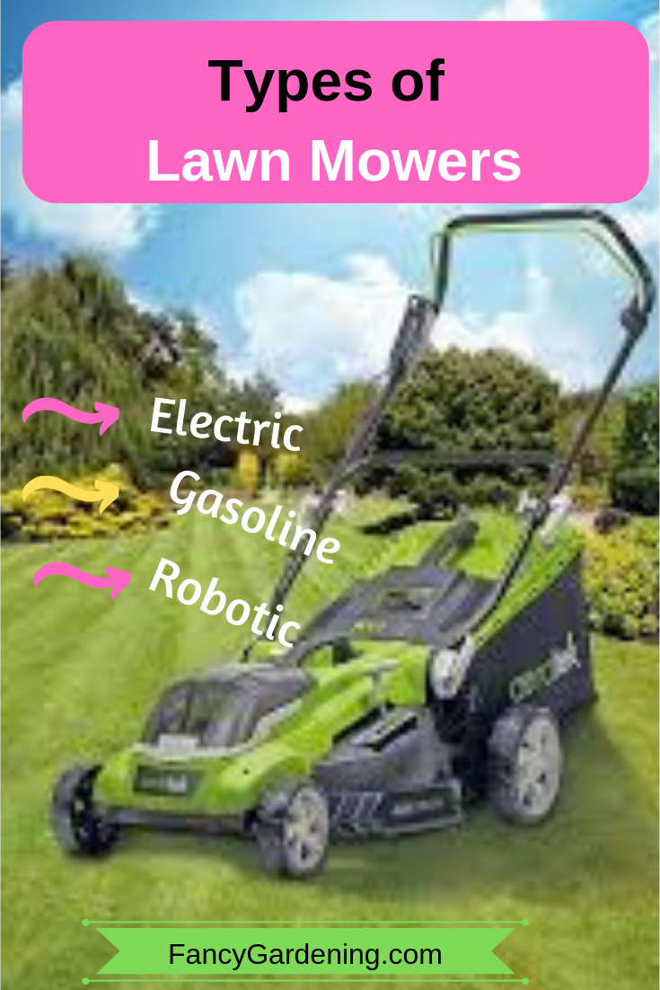 Types Of Lawn Mowers Electric Gas Robotic Hover Mowers Types Of Lawn Best Lawn Mower Lawn Mowers