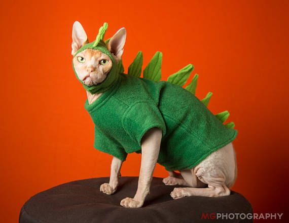 Pet Costume Godzilla Dinosaur Halloween Cat Clothes. Pet Hat & Pet Costume Godzilla Dinosaur Halloween Cat Clothes. Pet Hat or Both ...