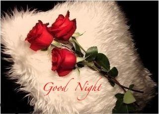 Good Night Rose Hd Image Download