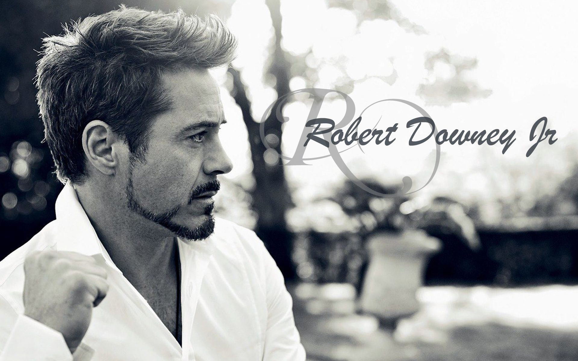 Robert Downey Jr Wallpapers High Resolution And Quality Download