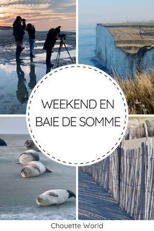 Weekend en Baie de Somme : une escapade nature !