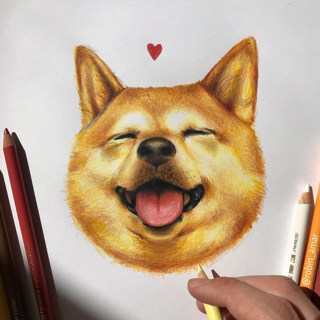Robin En Instagram Shiba Inu J Ai Voulu Faire Un Dessin Mignon Je Trouve Qu Il Ressemble A Natsu Le Chien De Xsqueezie J A In 2020 Shiba Inu Dogs Drawings