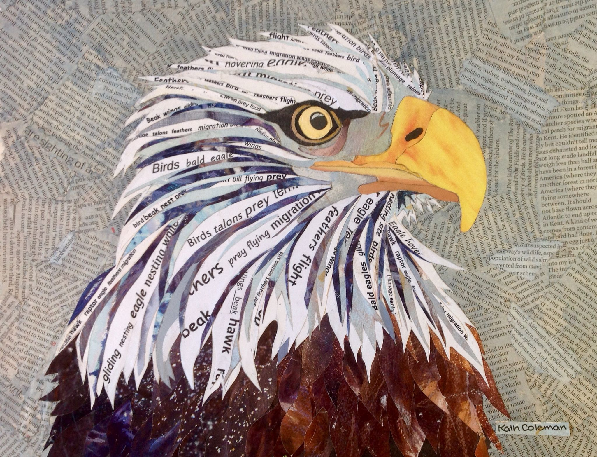 """""""Bald Eagle"""" Cut and torn paper collage by Kath Coleman"""