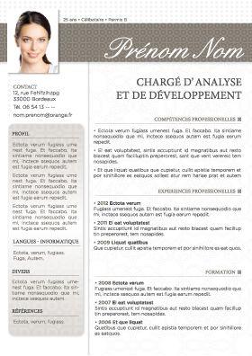 Cvstore Fr Modeles De Cv Et Lettres De Motivation Modele Cv Gratuit Modele Cv Cv Consultant