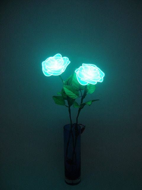 Paint some plastic roses with glow in the dark paint, put them in a vase = DIY night light!