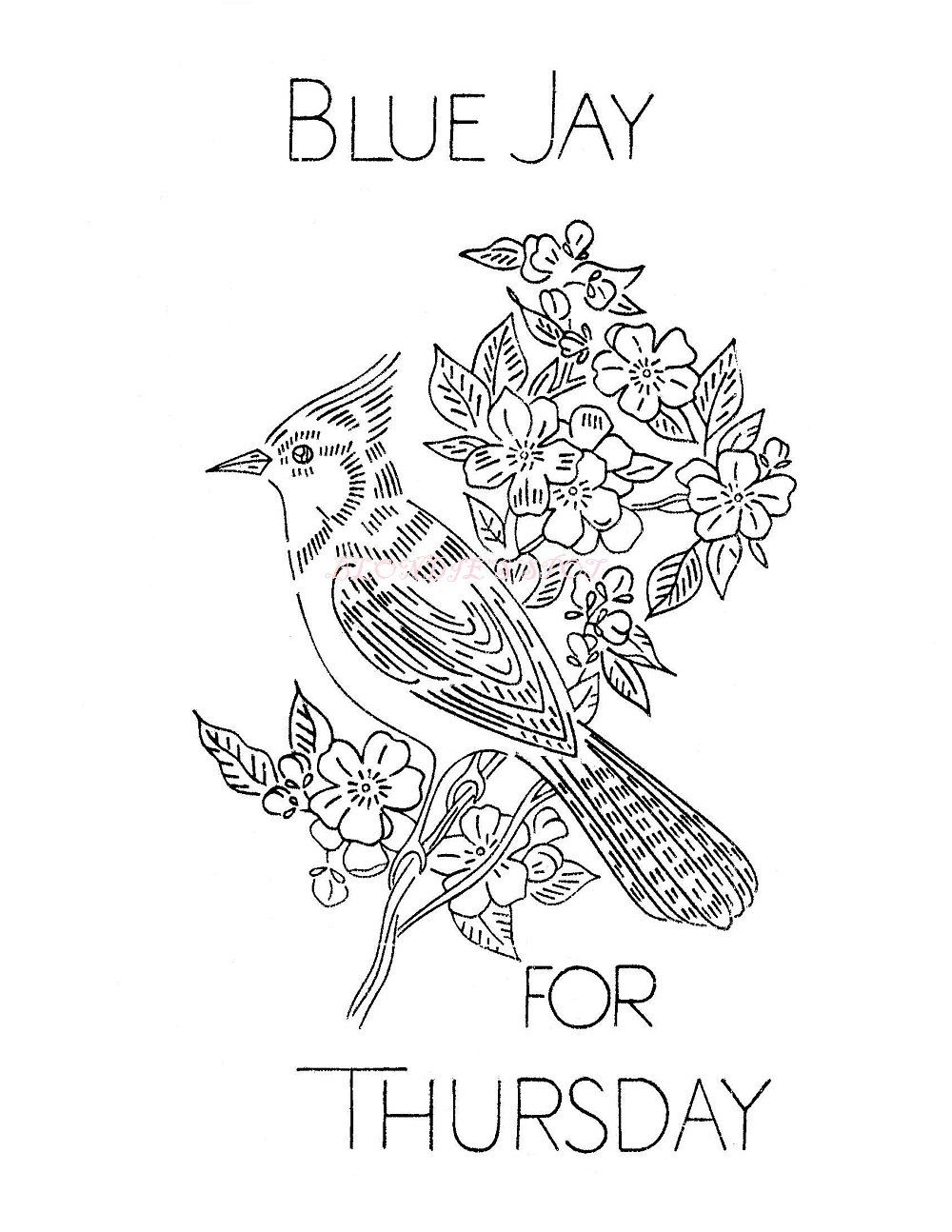 Wild Birds for Days of the Week dish towels V 649 Robin Cardinal ...