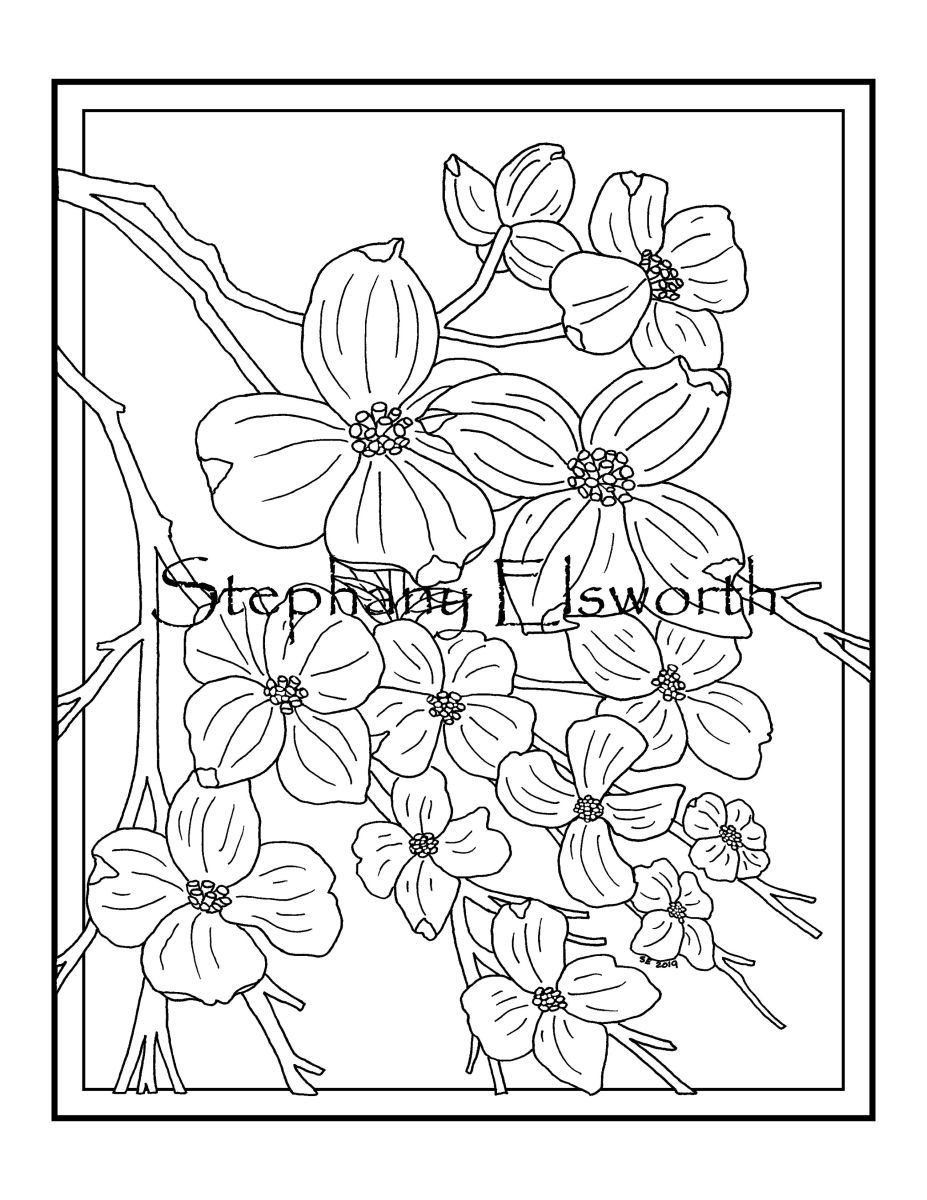Dogwood Blossom Instant Download Printable Pdf Coloring Page